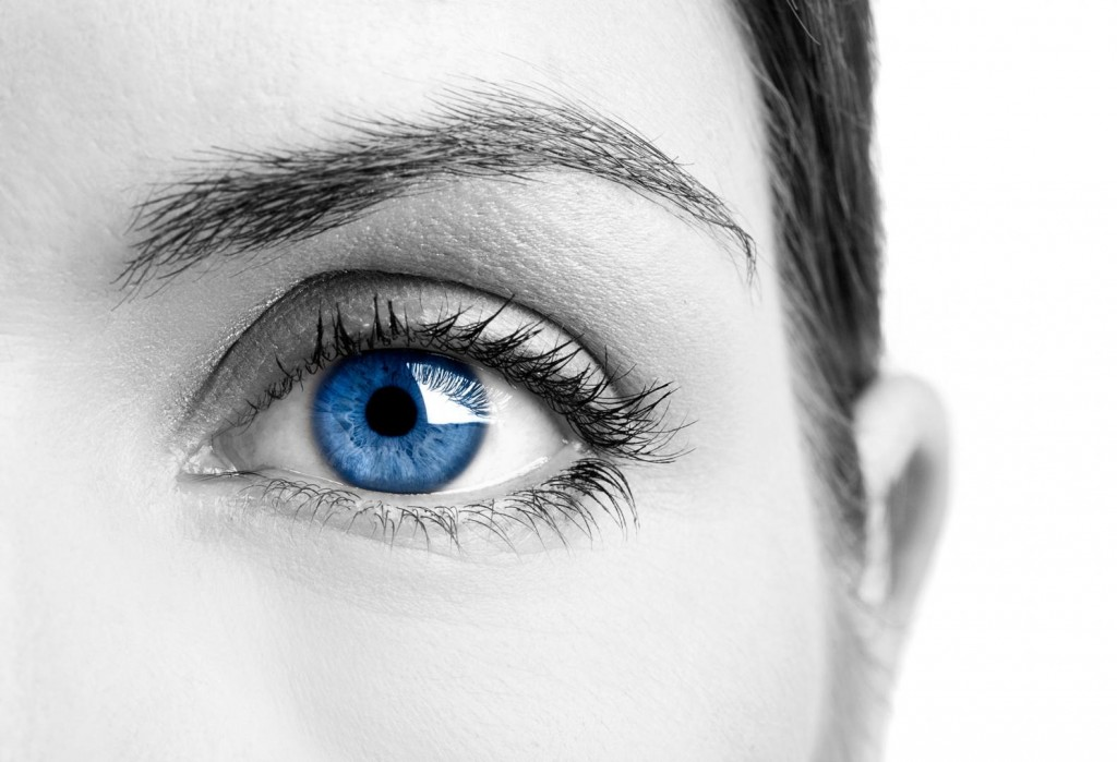 EyeRobotica Articles